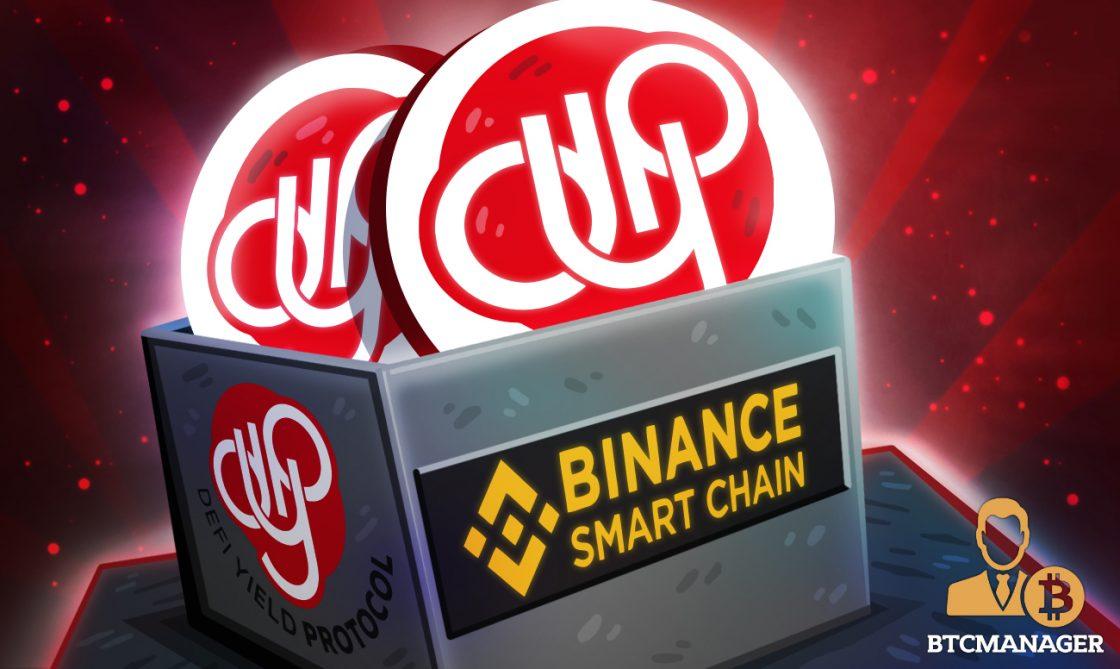 DeFi Yield Protocol Community Update—Staking Pools Tutorial on Binance Smart Chain