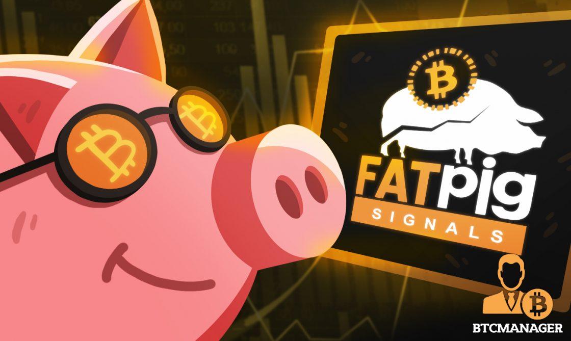 Fat Pig Signals - A Crypto Signals